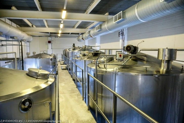 Крупнейшие проекты в молочной отрасли. Обзор строительства, изображение №8