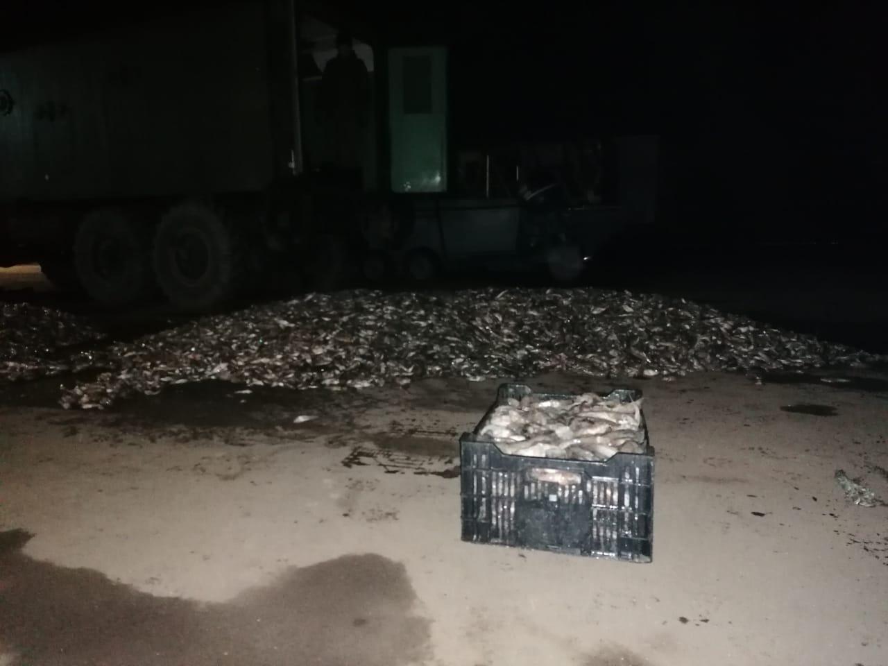 Под Таганрогом в Петрушино пограничники задержали браконьера с уловом на сумму около 4 млн рублей